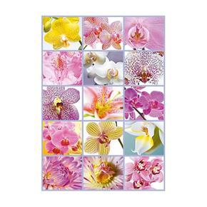1500 Collage De Flores Piezas Educa Borrás Puzzle shCtrxdQ