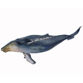 Fo Ballena Jorobada/ Humpback Whale