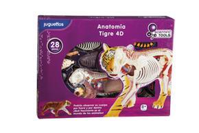 Scientific Scientific Tools Tigre Tigre Anatomía Anatomía 4d Anatomía Scientific 4d Tools Tools IHED29