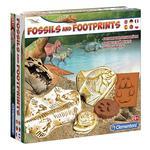 Fósiles Y Huellas