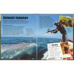 Animals En Extincio Idioma Catalan Susaeta