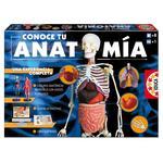 Juego Conoce Tu Anatomía Educa Borrás