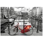 Puzzle 1000 Piezas – Ámsterdam