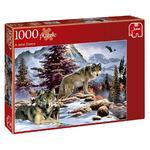 Puzzle Jumbo 1000 Piezas (varios Modelos)-1