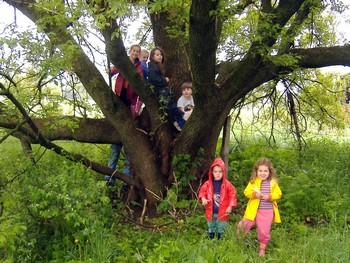 Niños en un parque